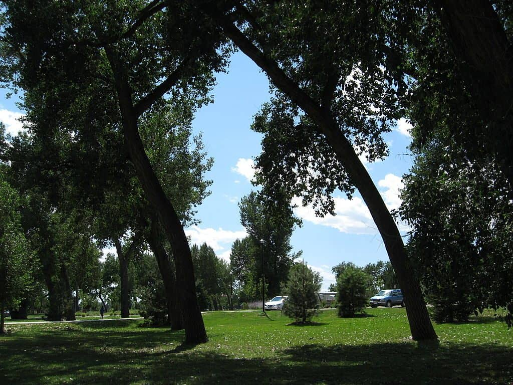 Lions Park Cheyenne