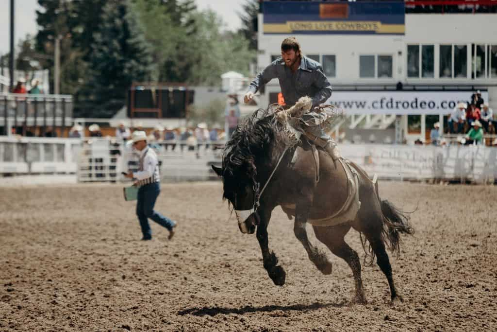 A man riding a horse at a rodeo at the Cheyenne Frontier Days event