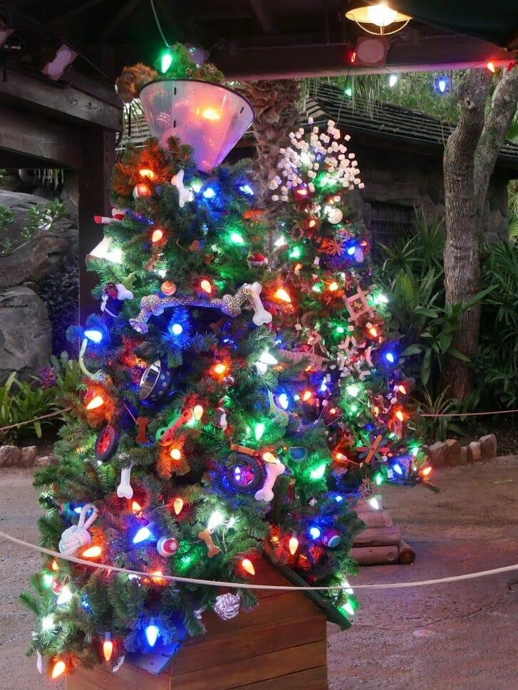 Some small Christmas trees lit up at Animal Kingdom