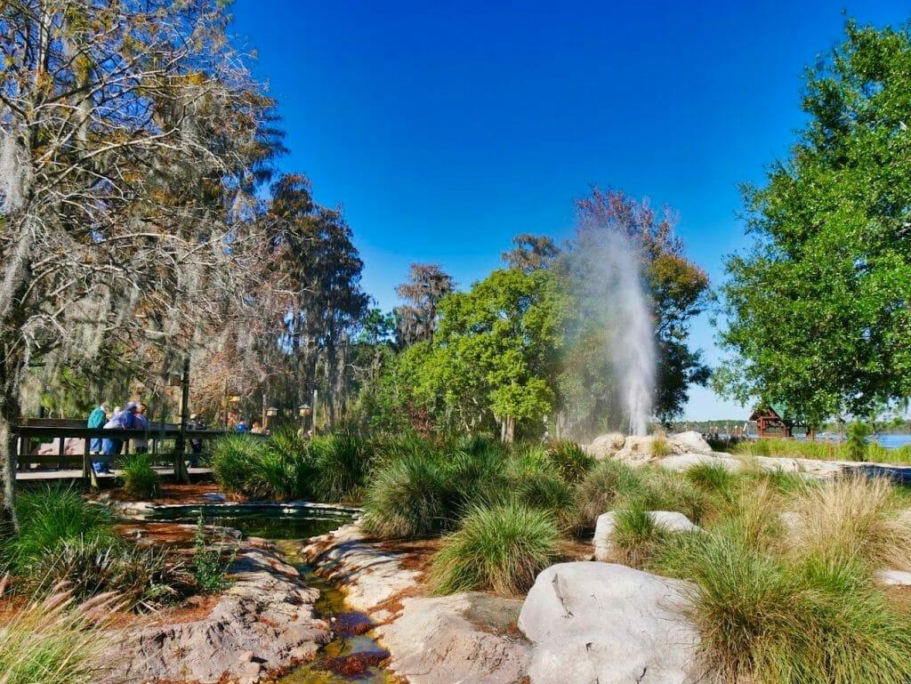 A geyser spraying water at Wilderness Lodge