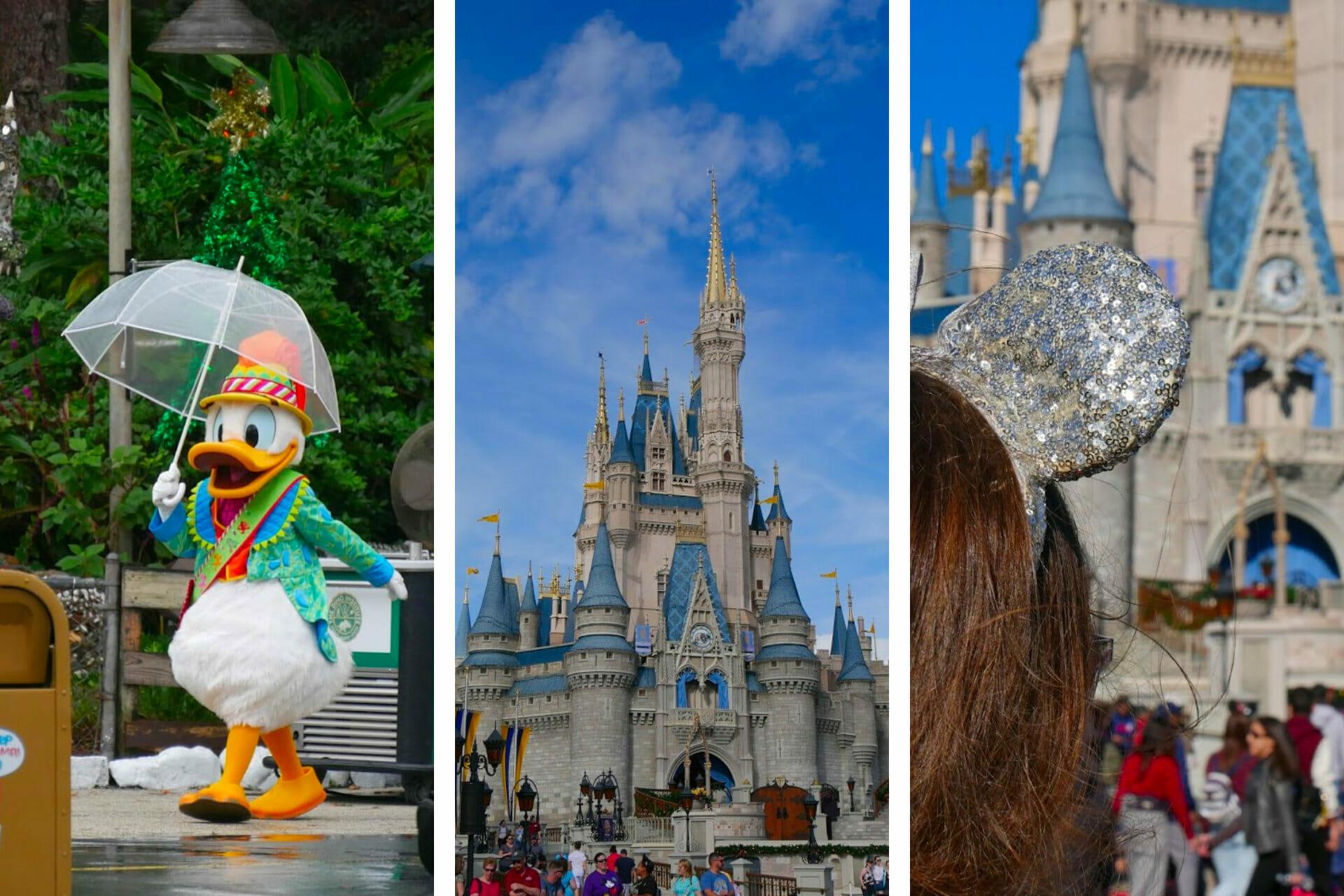 Going to Disney World Alone: Ultimate Solo Trip to Disney Guide (2021) via @allamericanatlas
