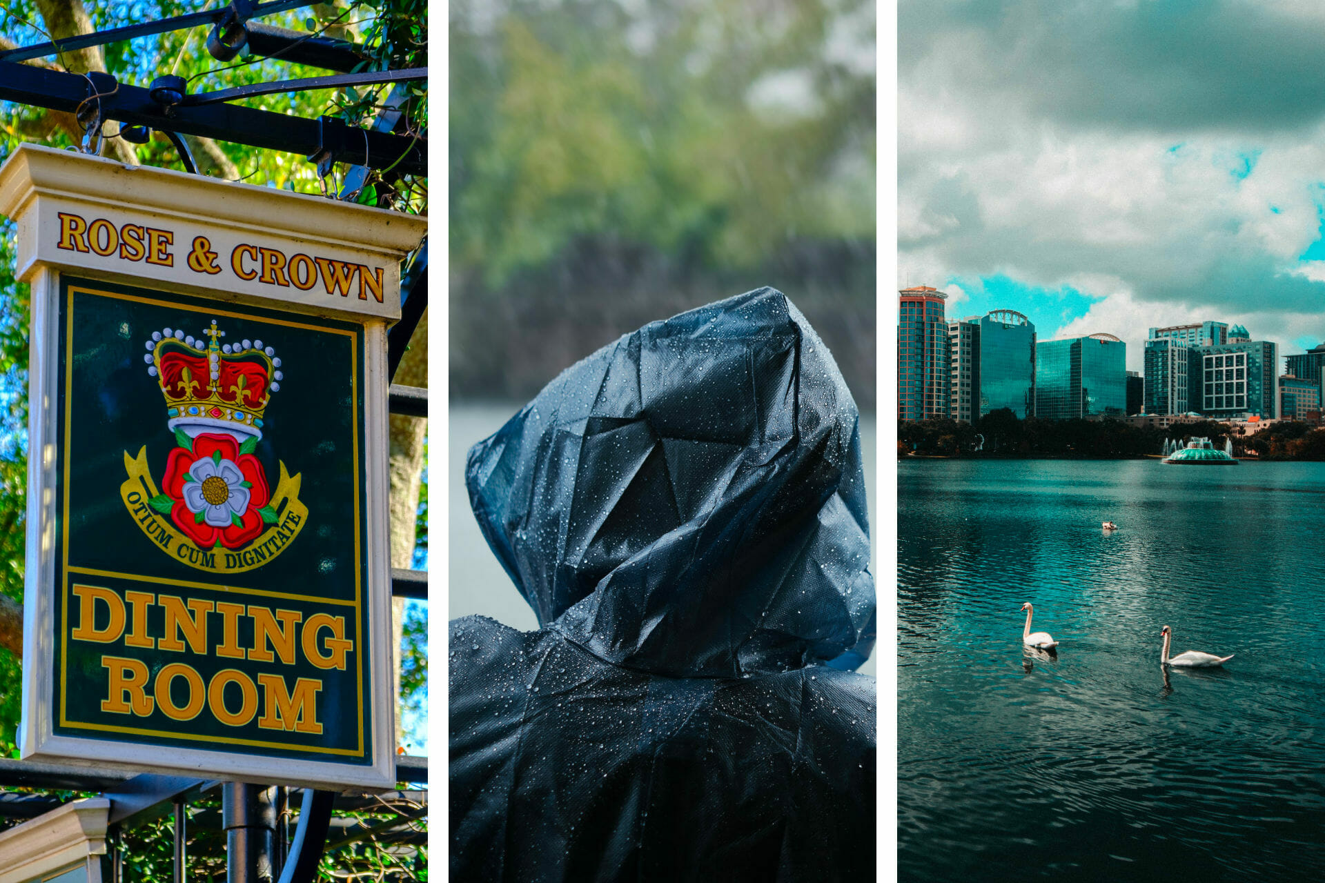 21+ Things to Do on a Rainy Day in Orlando (2021) via @allamericanatlas