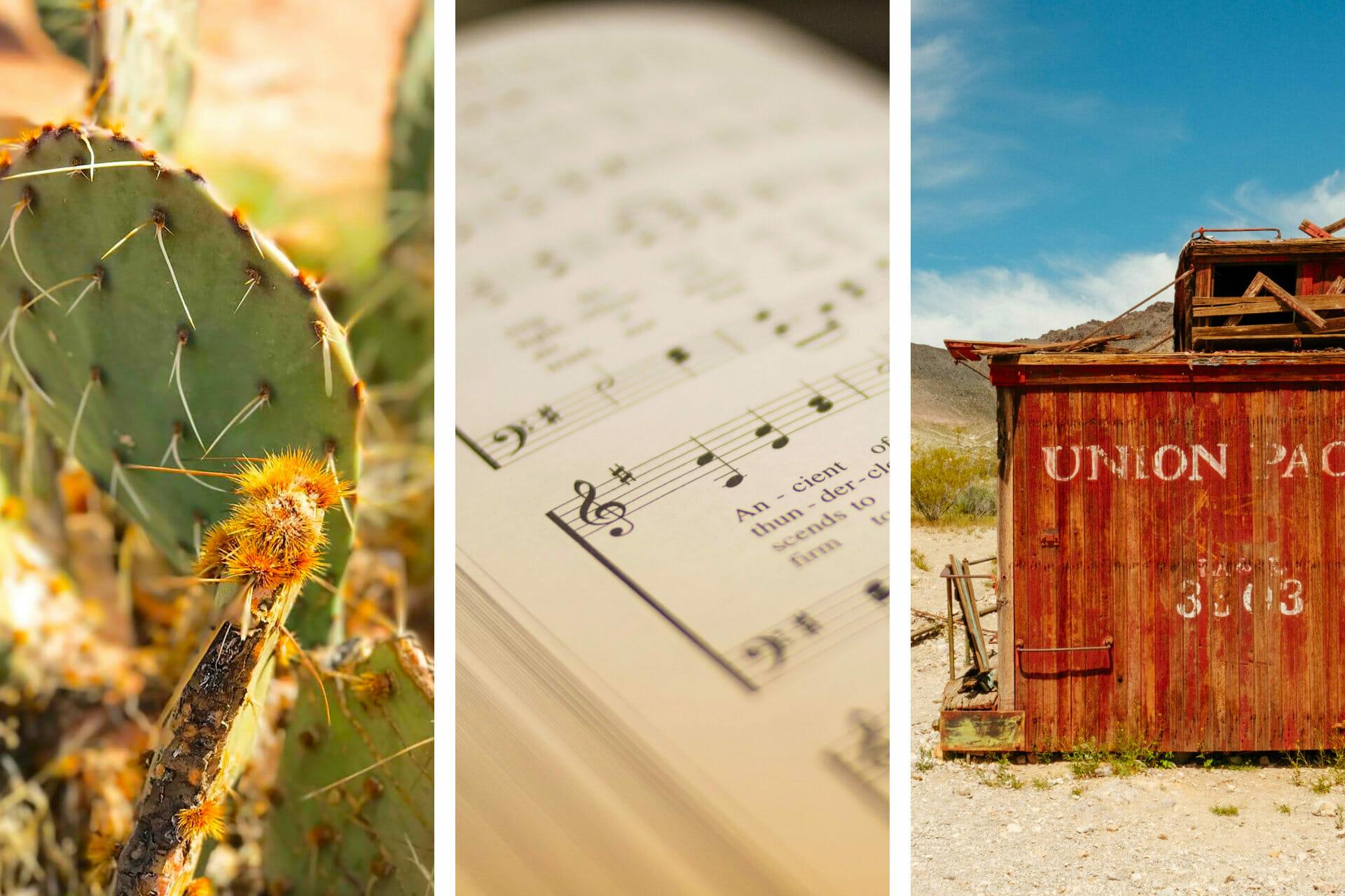 26+ Inspiring Songs about Nevada via @allamericanatlas