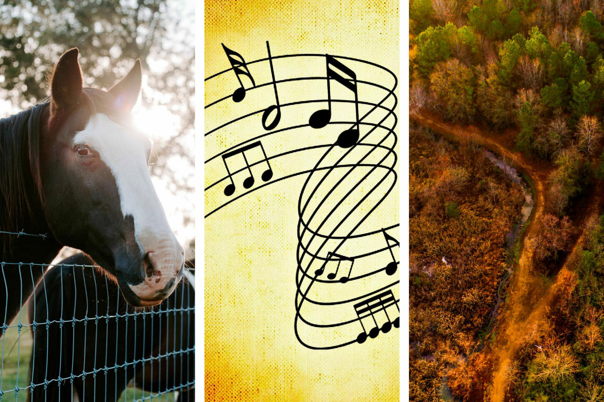 23+ Songs about Alabama to Inspire You via @allamericanatlas