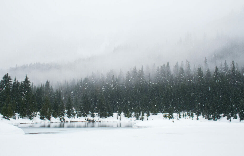 snowy landscape with a lake and trees