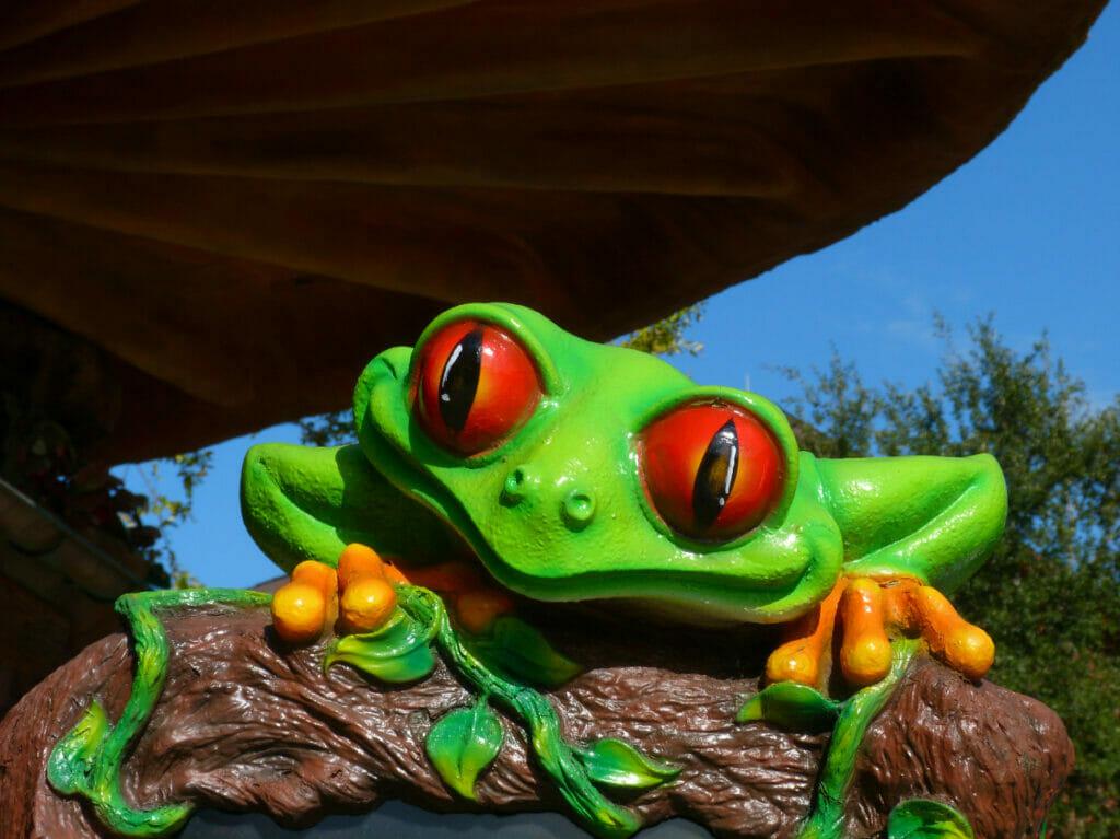 frog at Rainforest Cafe