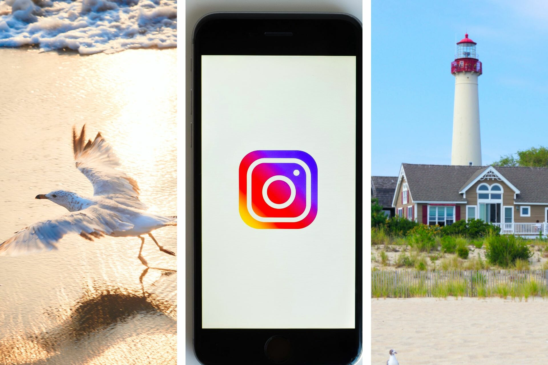 23 Jersey Shore Instagram Captions for the Perfect Post via @allamericanatlas